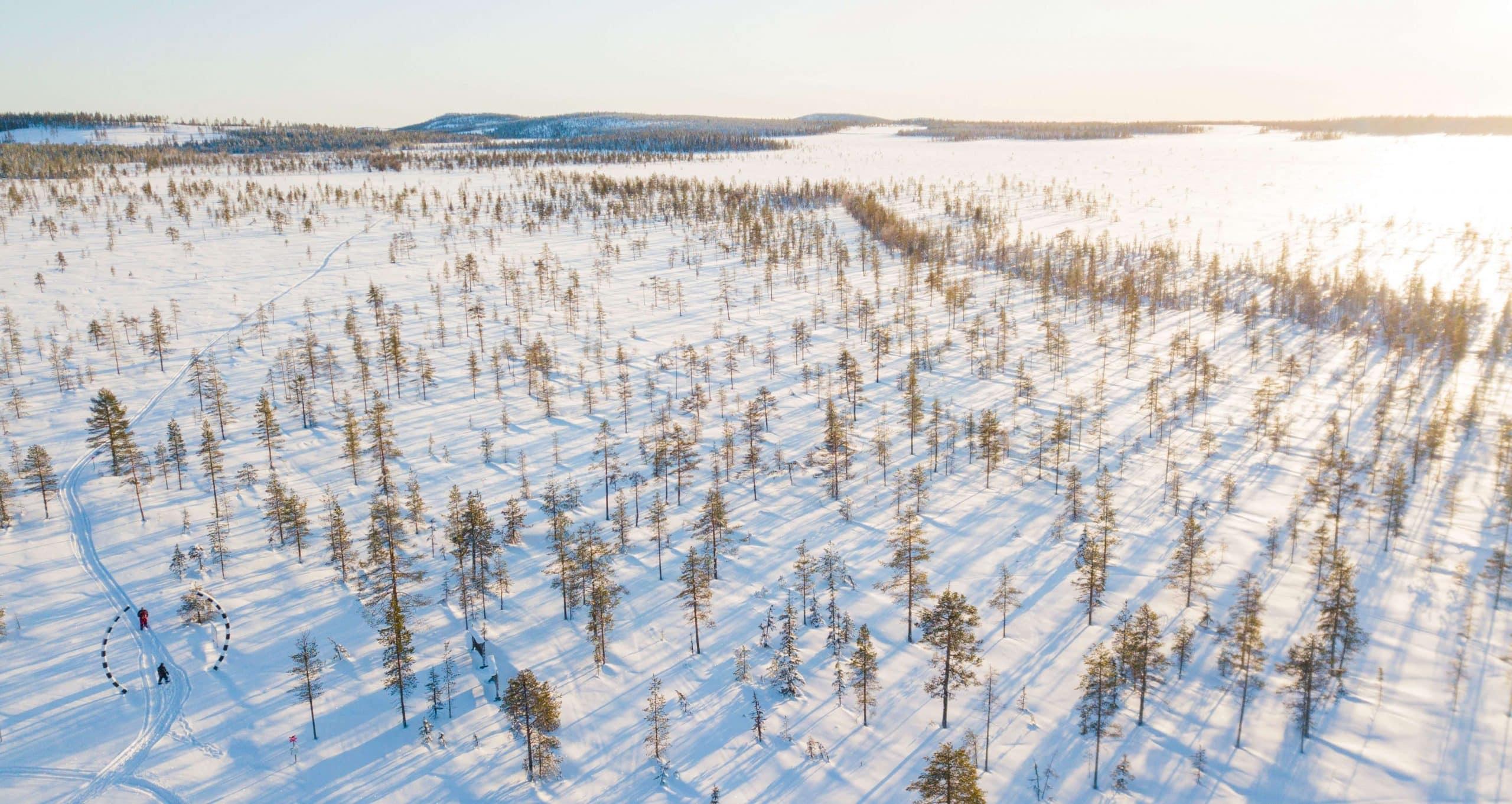 activité en Laponie Suédoise