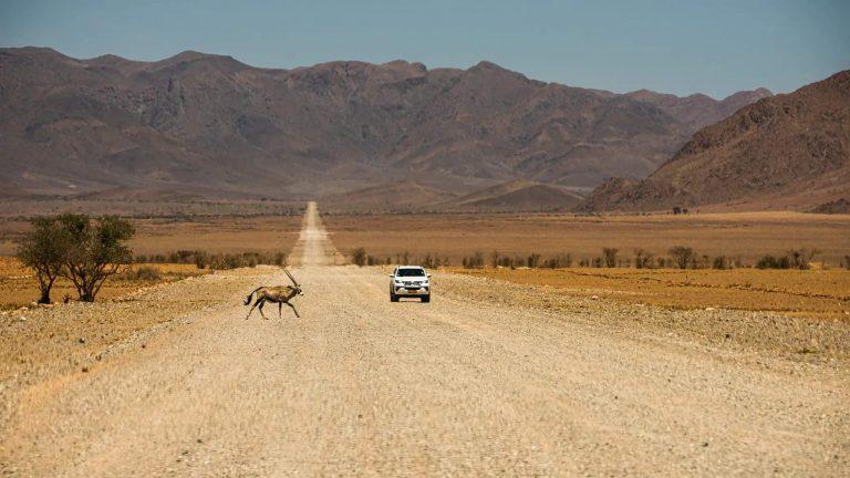 Road trip en namibie