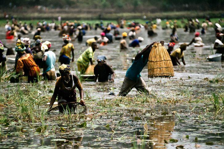 La Fête de la Mare en Guinée